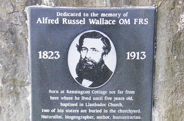 Il y a cent ans s'éteignait Alfred Wallace