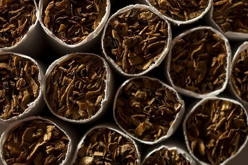 Carquefou (44) : 327 emplois vont partir en fumée