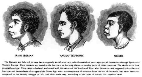 irlandais_esclavage