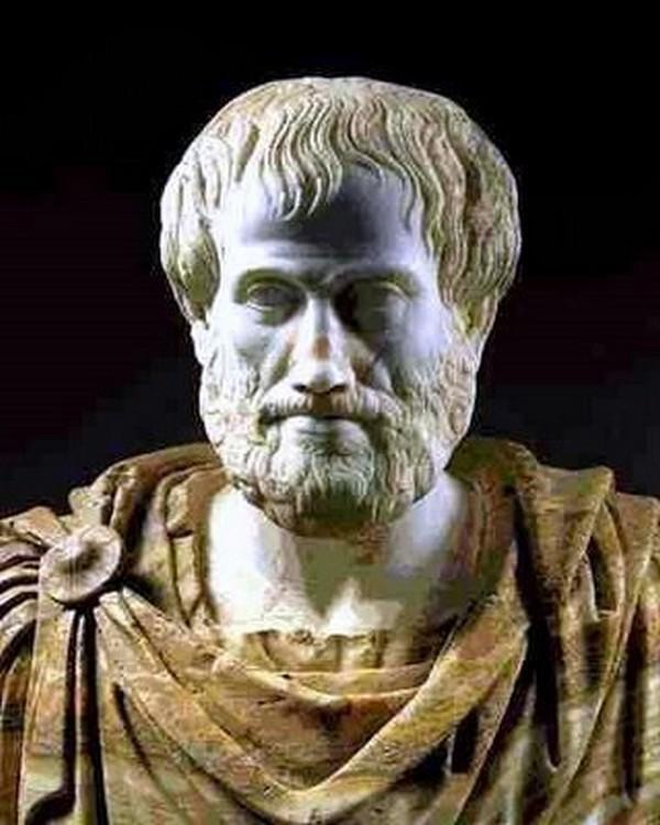 """Aristote. """"Les humains sont par nature des êtres sociaux"""""""