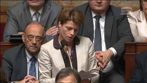 Député et Porte-parole de l'UMP . Lourde tâche pour Isabelle Le Callennec