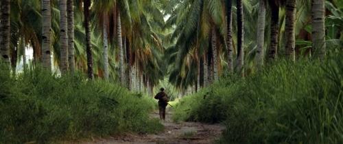 7 films à voir ou à revoir sur le thème de la Guerre comme expérience intérieure