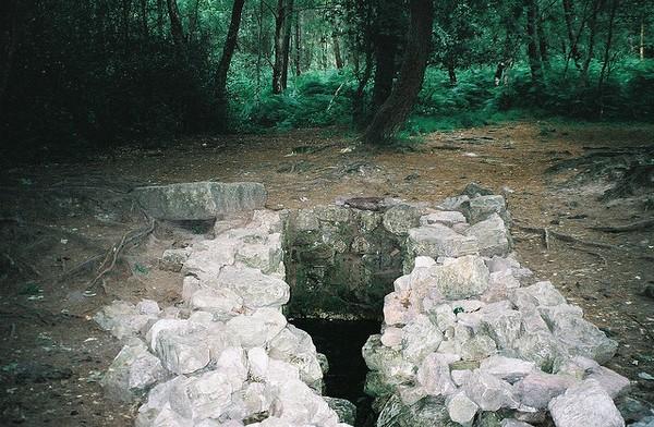 Fontaine de Barenton. Photo Ramjeethun Elodie Flickr (cc)