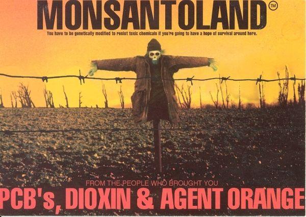 Le Salvador a banni le Roundup et connaitrait des récoltes record depuis.
