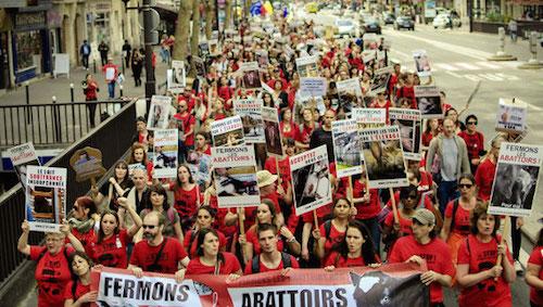 Paris. Des Bretons participeront ce samedi à une marche pour l'abolition des abattoirs.