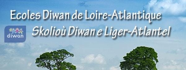 Nantes. D'anciens salariés dénoncent les méthodes de l'AEP Diwan Naoned