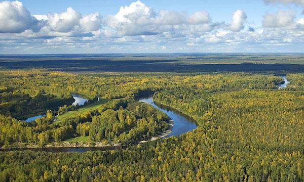 Environnement. Les sols de Sibérie à la rescousse du climat