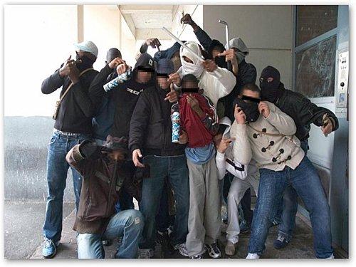 Rennes une bande de jeunes d linquants entre dans un for Salon de la gastronomie rennes