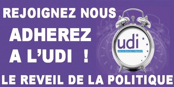Jacques Le Nay (UDI) aurait fabriqué des adhérents…