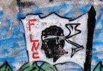 corse_fnlc_part_en_guerre_contre_daech