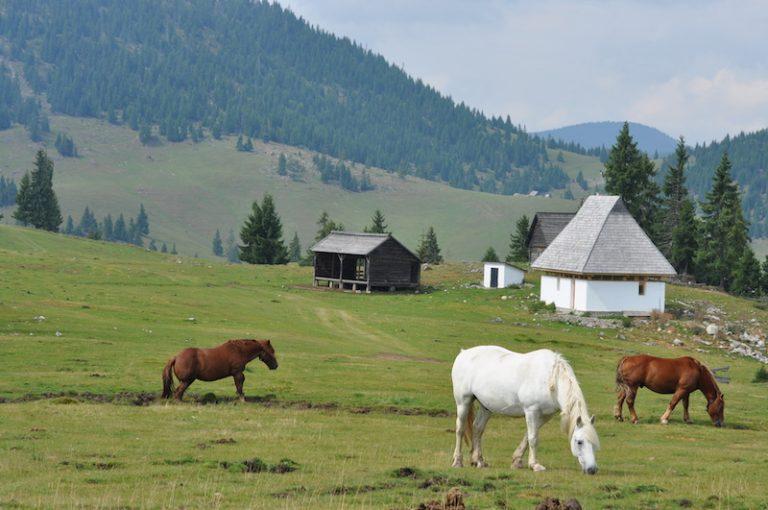 Roumanie, la mémoire européenne. Un randonneur raconte