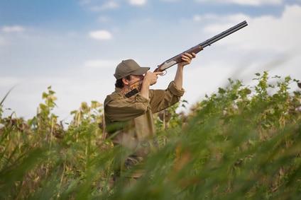 Bretagne. Ouverture de la saison de chasse, ce dimanche 18 septembre