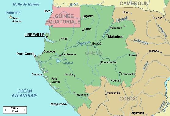 Sortie de L'Afrique Réelle n°82 : Gabon, encore une erreur des médias