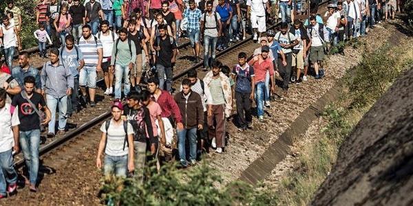 Grand Nantes, Pays de Retz et Vignoble : qui collabore à l'invasion migratoire ?