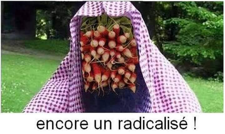 """Novlangue. La """"radicalisation"""", cache-sexe de l'islamisme"""