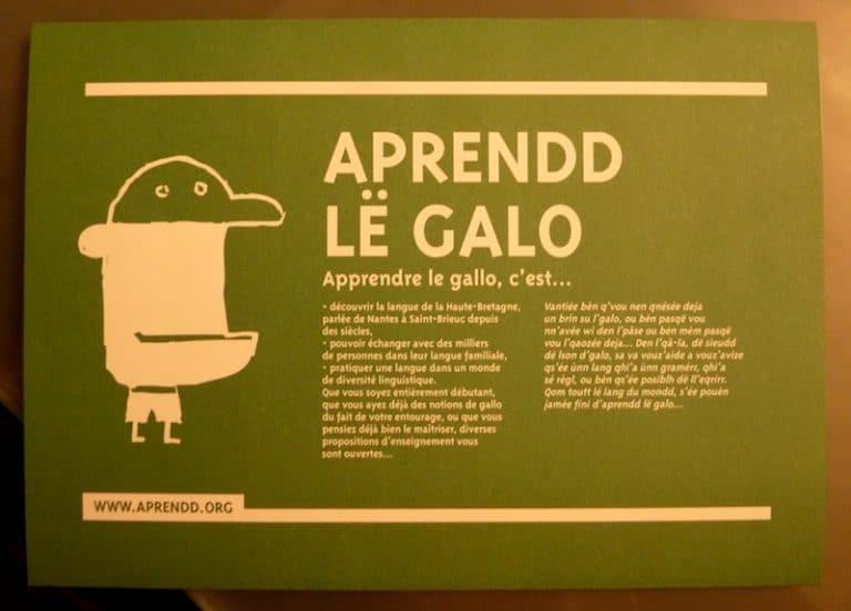 Le réveil du gallo en Bretagne. Un pied dans les écoles et lancement de cours aux adultes