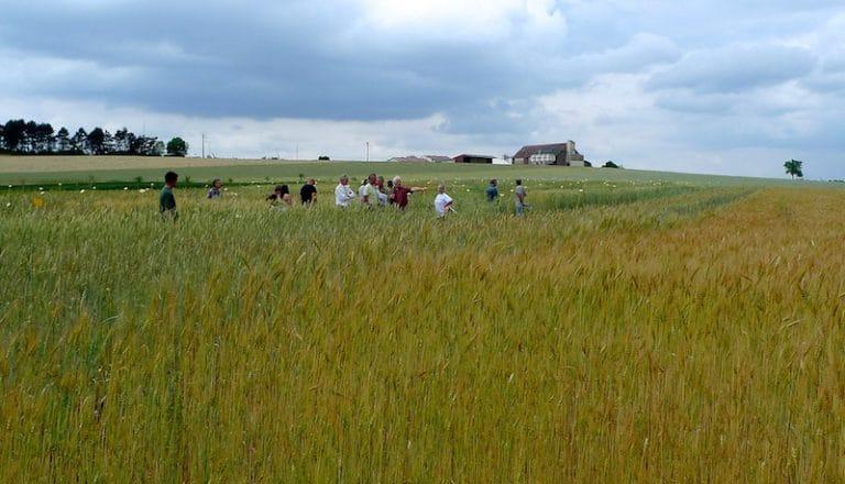 Présidentielle. La Coordination rurale (section agriculture biologique) fait onze propositions au prochain président