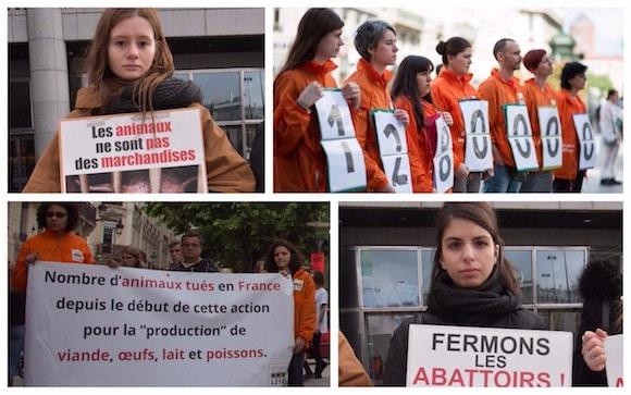 Rennes, Vannes, Saint-Malo : L214 va mener une action pour dénoncer les abattages d'animaux.