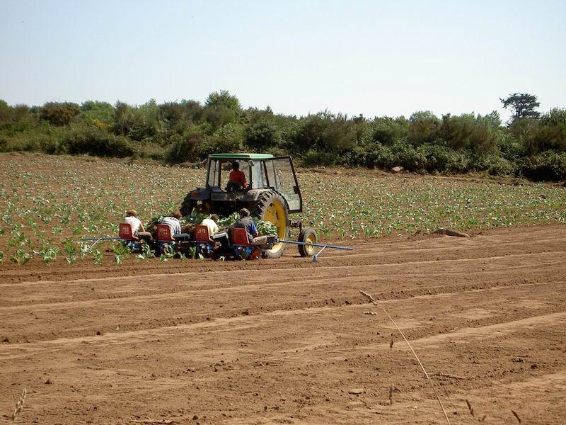 agriculture_bretagne