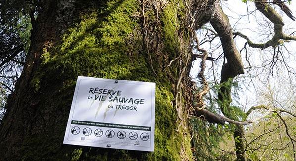 Une réserve de vie sauvage dans les Côtes-d'Armor