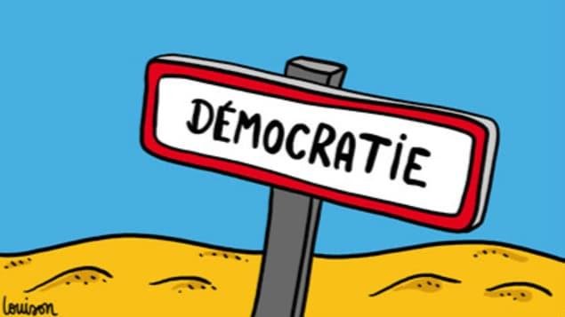 Elections législatives. Ces députés élus par une minorité et qui vont voter les lois