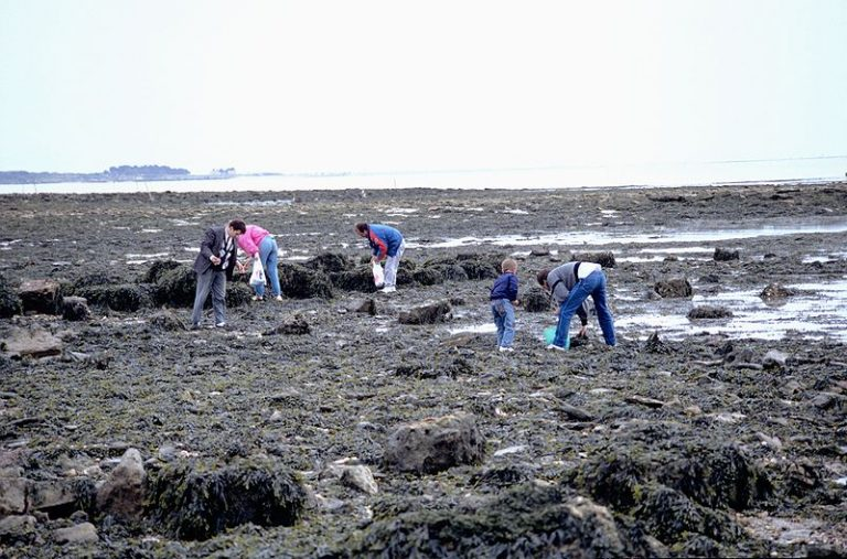 Finistère. Le préfet met en garde contre les grandes marées