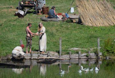 Régime alimentaire viking nordique Alzheimer