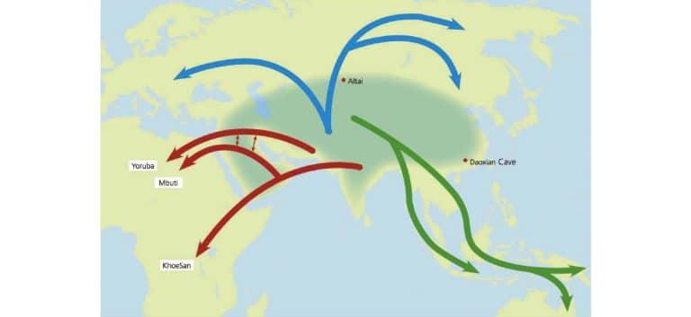 Sciences. L'Homme ne serait pas apparu en Afrique mais en Eurasie