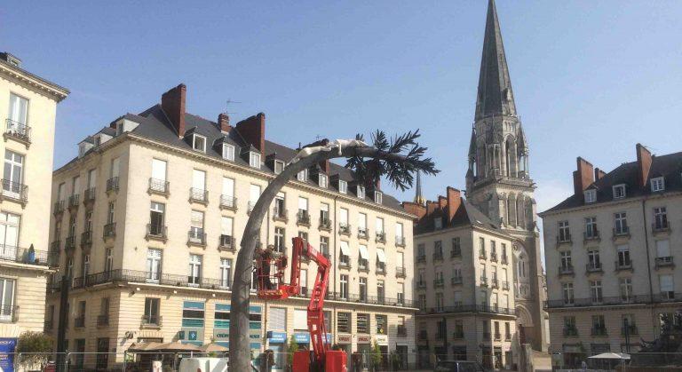 Voyage à Nantes. Démontage place Royale : parole aux Nantais