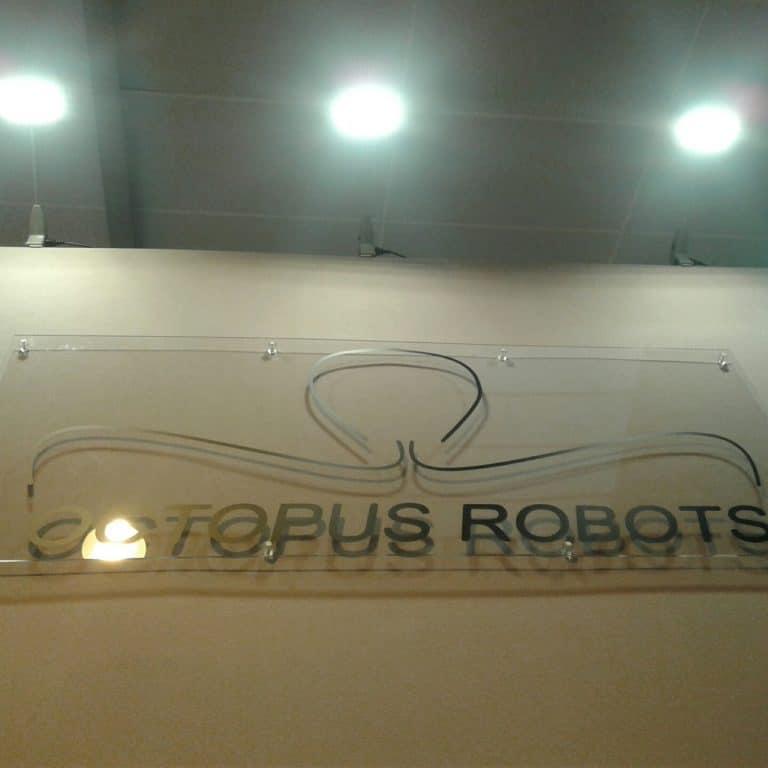 Octopus Robots: à Cholet, une start-up développe un robot qui fait tout pour l'élevage avicole