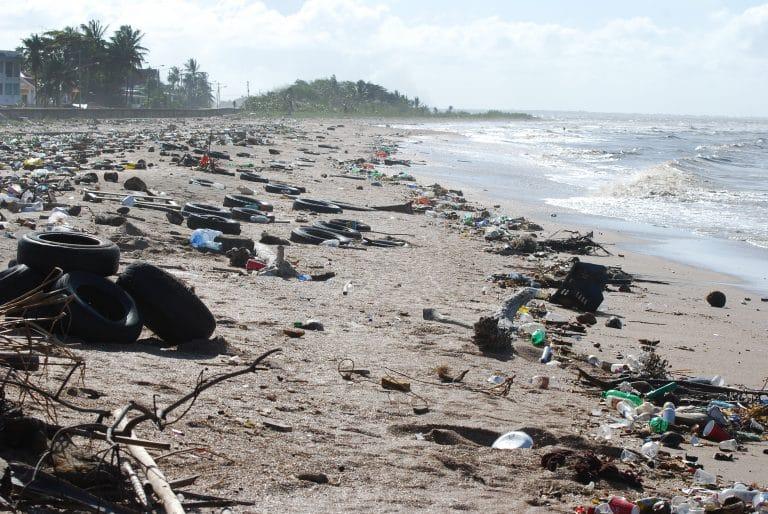 Environnement. Monaco et la Suède au chevet d'océans en détresse