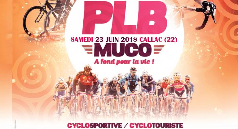 Callac. La Pierre Le Bigaut aura lieu le samedi 23 juin 2018