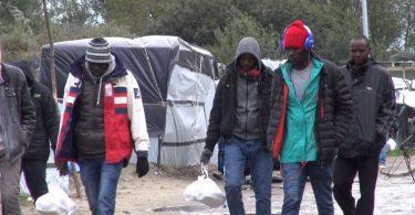 demandes d'asile
