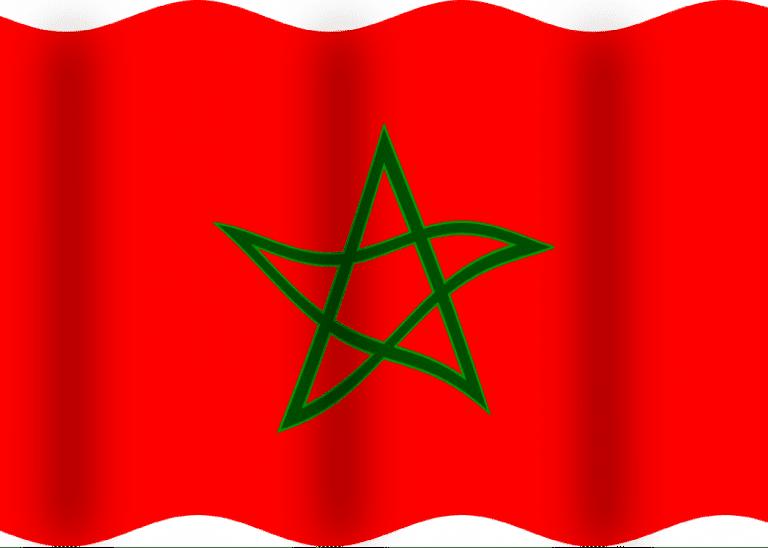 Victoire du Maroc. «  Agressés par des bandes de sauvages» à Bruxelles