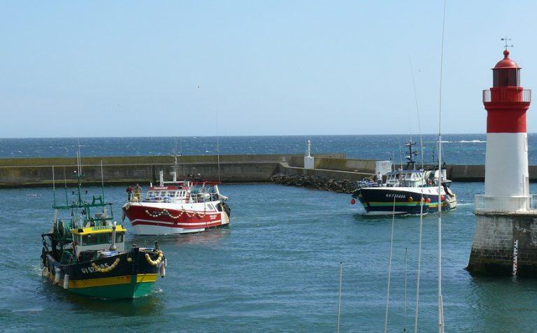 Pêche. Les ports de Cornouaille restent à flots en 2017