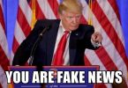 you-are-fake-news