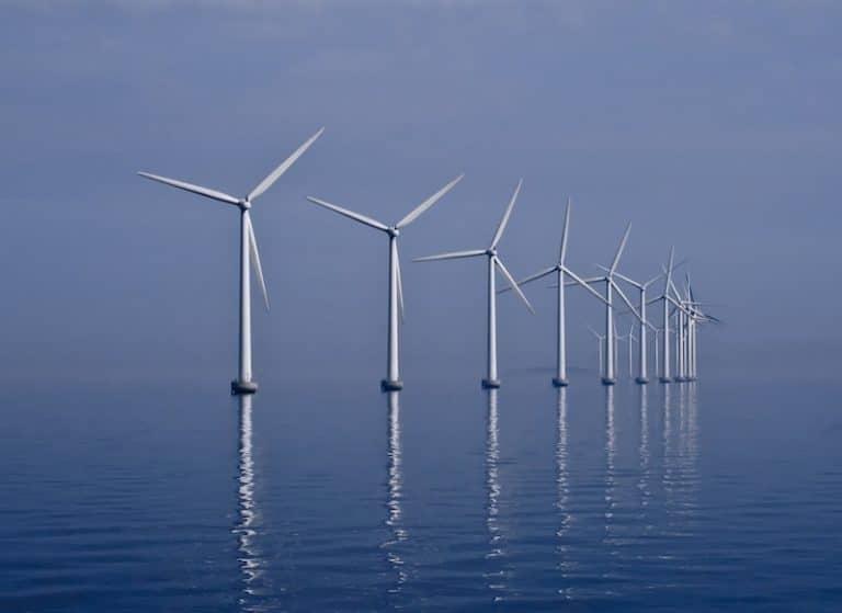 Fabien Bouglé : « L'éolienne est le symbole d'une nouvelle religion comme la croix pour les catholiques » [Interview]