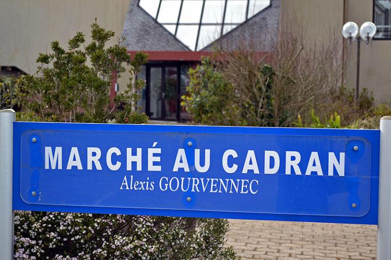 Saint-Pol-de-Léon. D'Alexis Gourvennec au bio, la SICA maintient le cap !