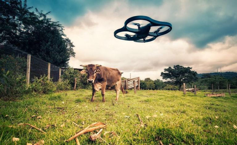 Intelligence artificielle. La révolution prochaine de l'agriculture ?