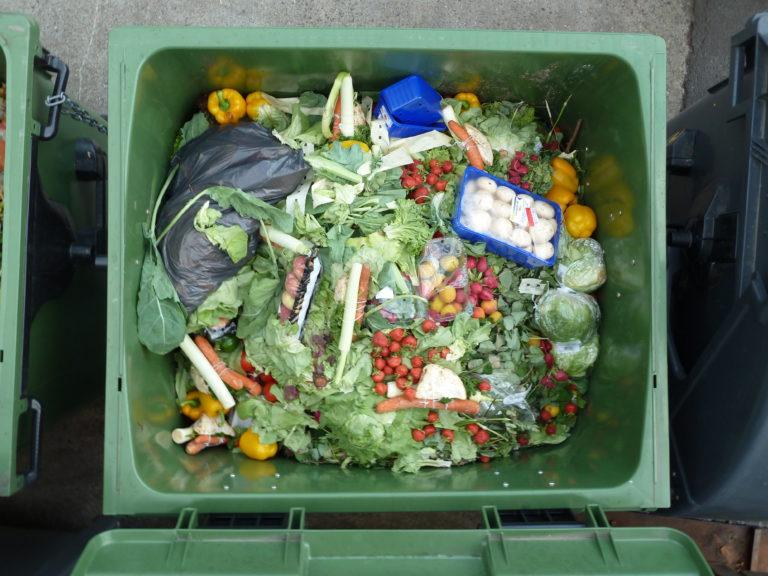 Loi anti-gaspillage : une occasion manquée pour l'économie circulaire ?