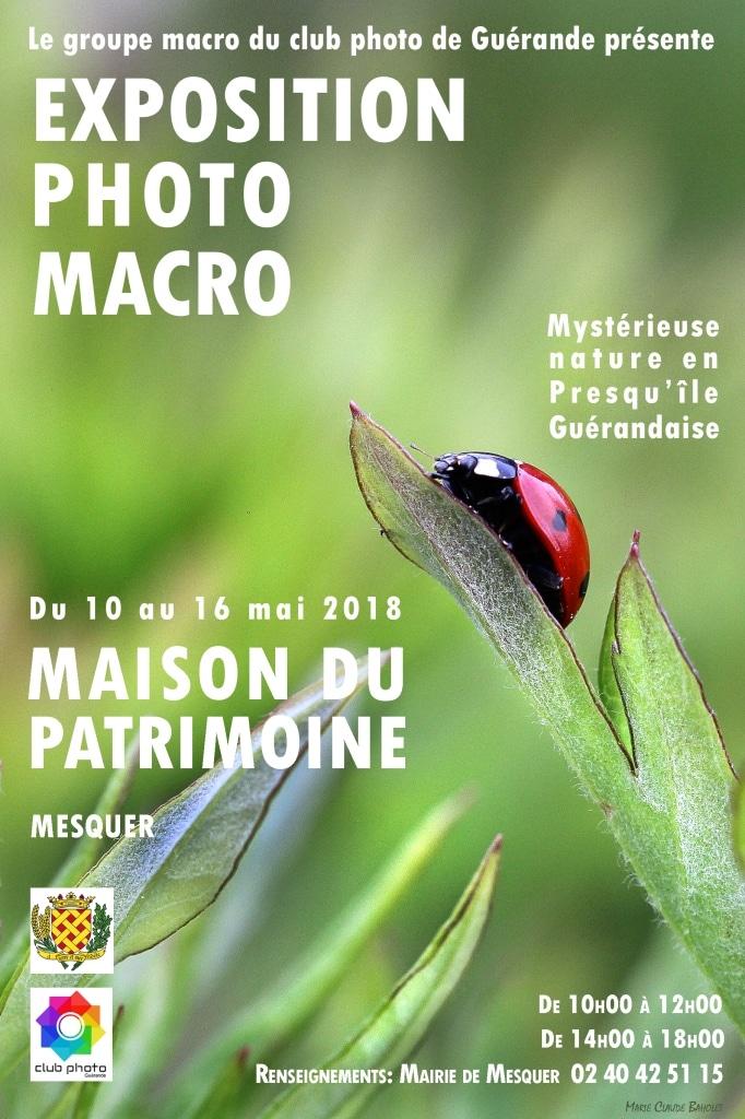Exposition. Mystérieuse Nature en Presqu'île de Guérande