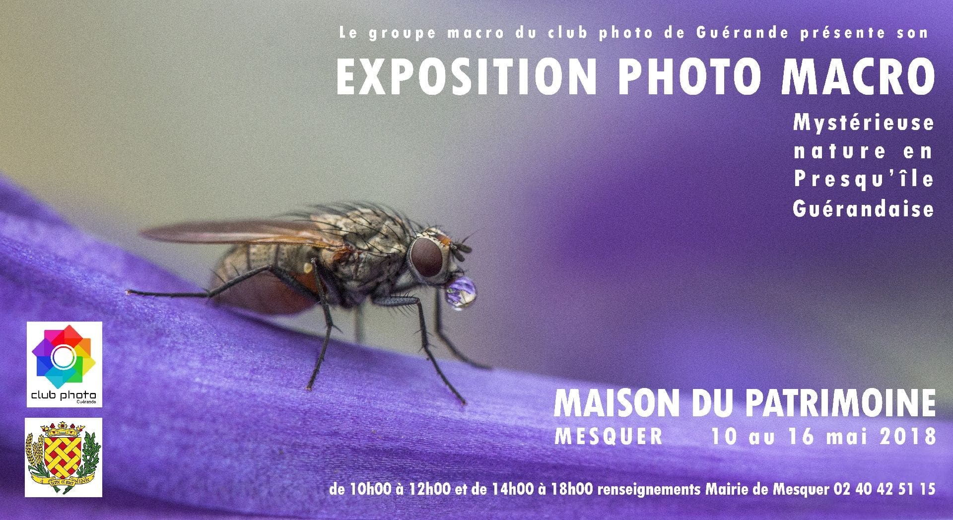 Mystérieuse Nature en Presqu'île de Guérande
