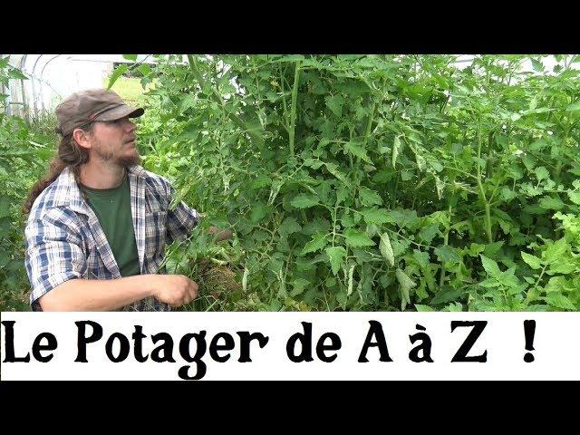 Le potager de A à Z : la biodiversité [Vidéo]