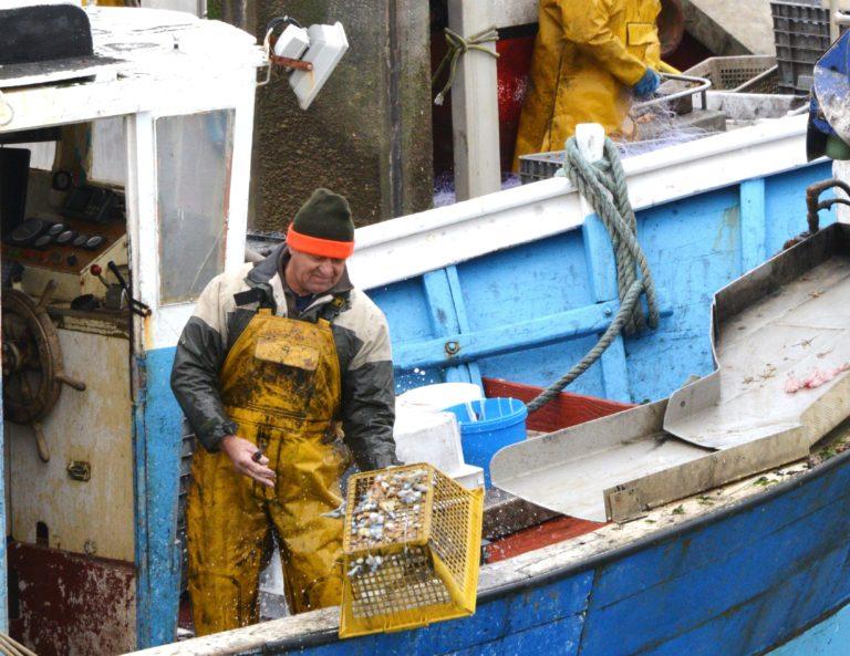 Le métier de marin pêcheur n'attire plus. À qui la faute ?