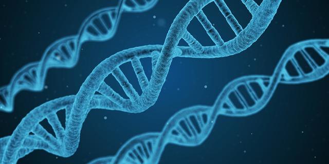 Les gènes influenceraient significativement les performances scolaires