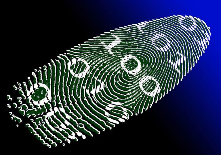 L'identité numérique renforcerait-elle l'authentification biométrique  ?