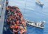 amnesty-italie-salvini-migrants