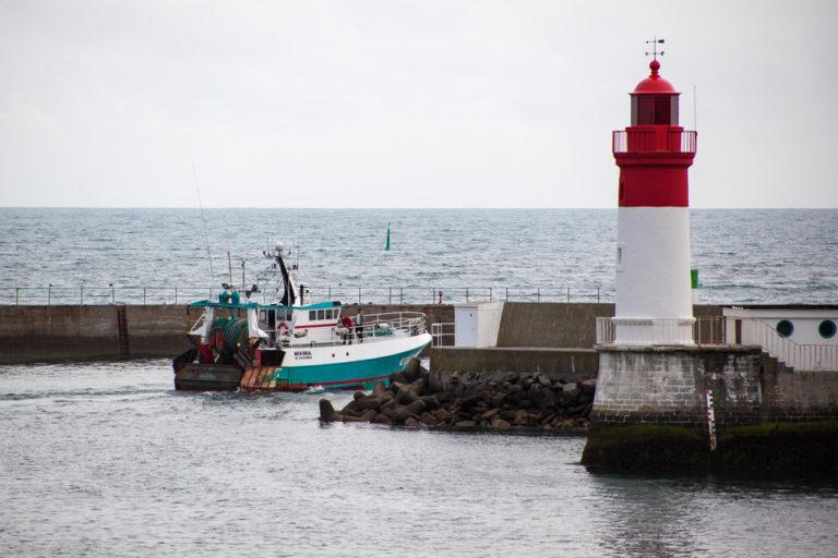Le Guilvinec. Haliotika : «beau temps belle mer » pour la Cité de la Pêche ! [Vidéo]