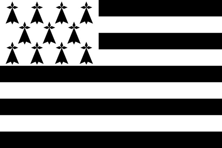 Emoji drapeau breton : plus de 20 000 soutiens mais des géants à convaincre !