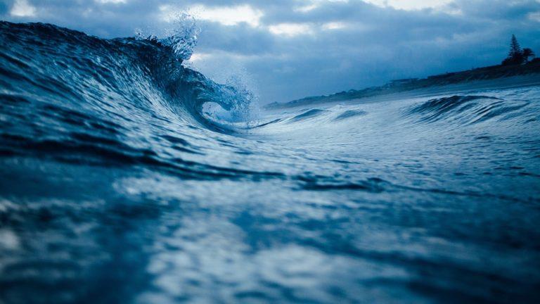 Saint-Malo. L'océan, un bien commun pour l'humanité (conférence)